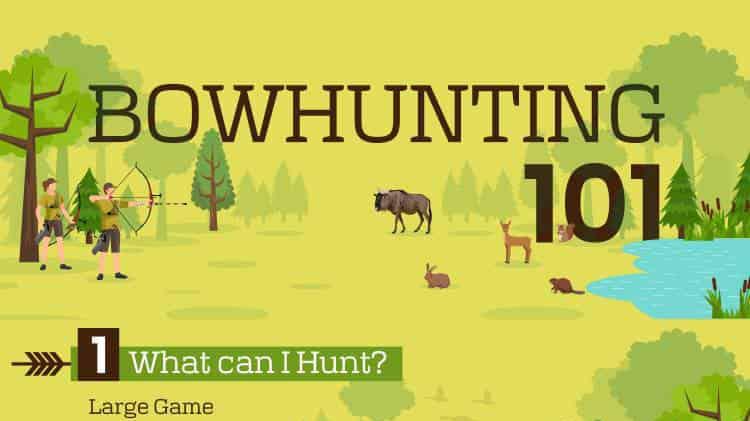 Bowhunting Basics